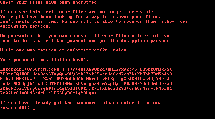 bad-rabbit-ransomware-message-VK
